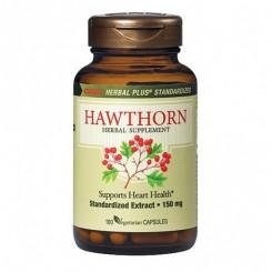 GNC Espinheiro de Alvar - Hawthorn 150mg (Crataegus laevigata)